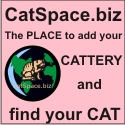 The Big Webdirectory About Pets